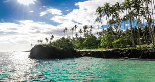 Tropical volcanic beach on Samoa Island with palm trees stock video footage