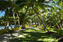 Tropical walking pathway. A green walking path at a south pacific tropical resort shows a shaded, grassy walkway to a local bure Royalty Free Stock Photography
