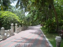 Tropical walkway Royalty Free Stock Photography