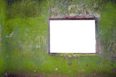 Tropical Wall And Blank Window Royalty Free Stock Images
