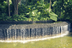 Tropical water cascade Royalty Free Stock Image