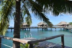 Tropical water huts, bungalows in Bora Bora Tahiti idyllic honeymoon vacation with palm tree leaves stock photos