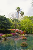 Tropical Water Landscape Stock Photography