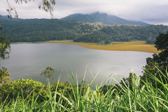 Tropical water landscape view with lake and green forest Stock Photos