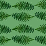 Tropical watercolor abstract pattern with fern leaves. Tropical watercolor abstract pattern with green fern leaves Stock Photography