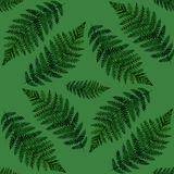 Tropical watercolor abstract pattern with fern leaves Stock Images