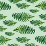 Tropical watercolor abstract pattern with fern leaves Royalty Free Stock Photography