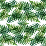 Tropical watercolor abstract pattern with fern leaves Stock Photography
