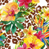 Tropical watercolor flowers and leaves on animal print Royalty Free Stock Image