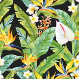 Tropical watercolor pattern. Beautiful pattern with watercolor tropical leaves and flowers Royalty Free Stock Photo