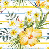 Tropical watercolor pattern royalty free illustration