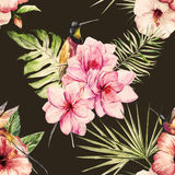Tropical watercolor pattern Stock Photography