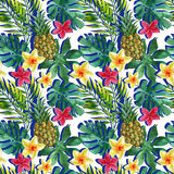 Tropical watercolor pineapple, flowers and leaves with shadows Royalty Free Stock Images