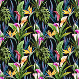 Tropical watercolor seamless pattern Stock Photo