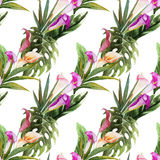 Tropical watercolor seamless pattern Royalty Free Stock Photography