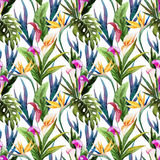 Tropical watercolor seamless pattern Royalty Free Stock Photo