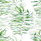 Tropical watercolor seamless pattern with green leaves illustration royalty free stock photography