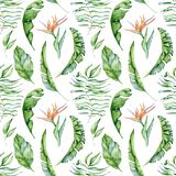 Tropical watercolor seamless pattern with green leaves illustration royalty free stock photos