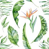 Tropical watercolor seamless pattern with green leaves illustration stock photo