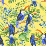 Tropical watercolor seamless pattern with toucan, exotic green l Royalty Free Stock Photos
