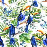 Tropical watercolor seamless pattern with toucan, exotic green l Royalty Free Stock Photo