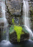 Tropical waterfall. Water falling over lava rocks and into a pond in Hawaii Royalty Free Stock Photos