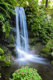 Tropical Waterfall Stock Photography