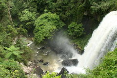Tropical waterfall - Atherton Tablelands Royalty Free Stock Photography