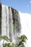 Tropical waterfall in Brasil Royalty Free Stock Photo