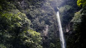 Tropical Waterfall. Waterfall captured on a small Tropical Island stock footage