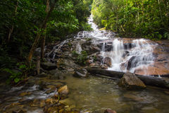 Tropical Waterfall Cascades. Waterfall in a tropical forest Stock Photo
