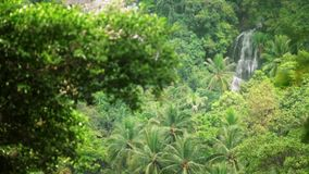 Tropical waterfall flows through dense rainforest. A tropical waterfall flows through a dense rainforest in Thailand stock video