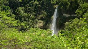 Beautiful tropical waterfall. Philippines Bohol island. Tropical waterfall in green forest in jungle. Waterfall with natural swimming pool in a mountain river stock video footage