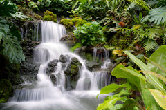 Tropical Waterfall. This image shows a tropical waterfall scene in Asia Stock Photography