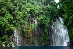 Free Tropical Waterfall In Jungle Stock Images - 1793934