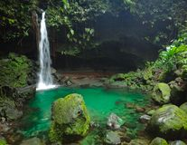 Tropical waterfall with swimming hole. Waterfall in tropical jungle with swimming hole royalty free stock photos