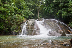 Tropical waterfall in jungle Stock Image