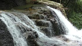 Tropical waterfall in jungle, Thailand. Small Waterfall in Jungle on Tropical Island Koh Samui, Thailand stock footage