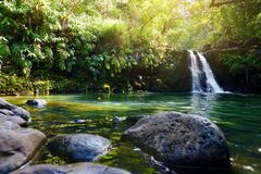 Tropical waterfall Lower Waikamoi Falls and a small crystal clear pond, inside of a dense tropical rainforest, off the Road to Han. A Highway, Maui, Hawaii, USA Royalty Free Stock Photo