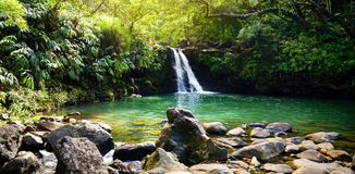 Tropical waterfall Lower Waikamoi Falls and a small crystal clear pond, inside of a dense tropical rainforest, off the Road to Han. A Highway, Maui, Hawaii, USA Stock Image