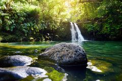 Tropical waterfall Lower Waikamoi Falls and a small crystal clear pond, inside of a dense tropical rainforest, off the Road to Han. A Highway, Maui, Hawaii, USA Stock Images