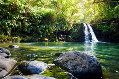 Tropical waterfall Lower Waikamoi Falls and a small crystal clear pond, inside of a dense tropical rainforest, off the Road to Han. A Highway, Maui, Hawaii, USA Royalty Free Stock Image