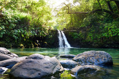 Tropical waterfall Lower Waikamoi Falls and a small crystal clear pond, inside of a dense tropical rainforest, off the Road to Han. A Highway, Maui, Hawaii, USA Royalty Free Stock Images