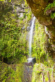 Tropical waterfall, madeira Stock Photo