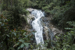 Tropical waterfall. In Malasia rain forest stock photos