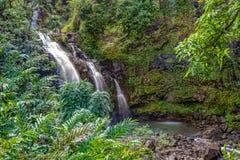 Tropical Waterfall Maui Royalty Free Stock Photography