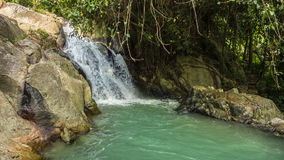 Tropical waterfall with mini lake loop. Tropical waterfall with mini lake in lungles loop stock footage