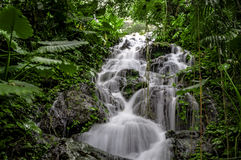 Tropical waterfall with motion blur in Mexican rainforest. Waterfall in a Mexican tropical rain forest with a stream made to look silky due to the motion blur royalty free stock photography