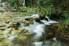 Tropical waterfall in rain forest Royalty Free Stock Image