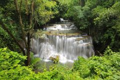 Tropical waterfall in rainforest Stock Image
